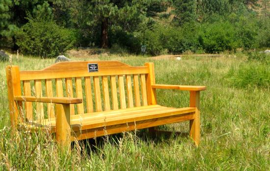 Dwight's Bench at walton's grizzly lodge