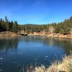Walton's Grizzly Lodge Ice Pond