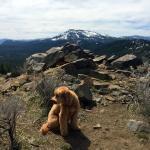 Camper Hike at California Summer Camps