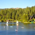 walton's grizzly lodge summer camp
